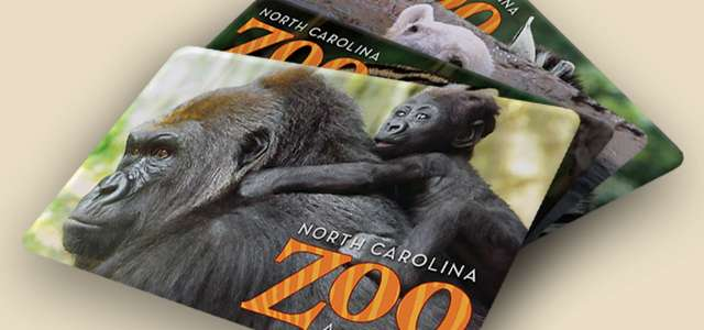 North Carolina Zoo gift cards make great gifts. Support conservation and give a thoughtful and unique gift!