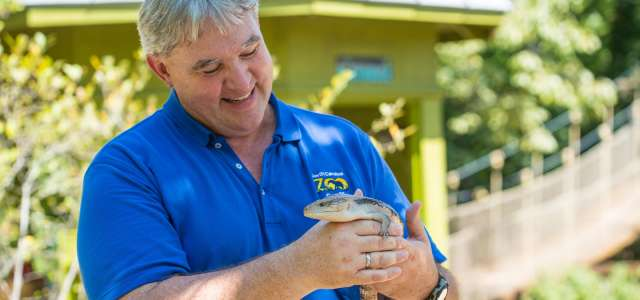 Educator with blue tongue skink
