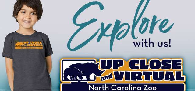 "Get an ""Up Close and Virtual"" at the North Carolina Zoo!"