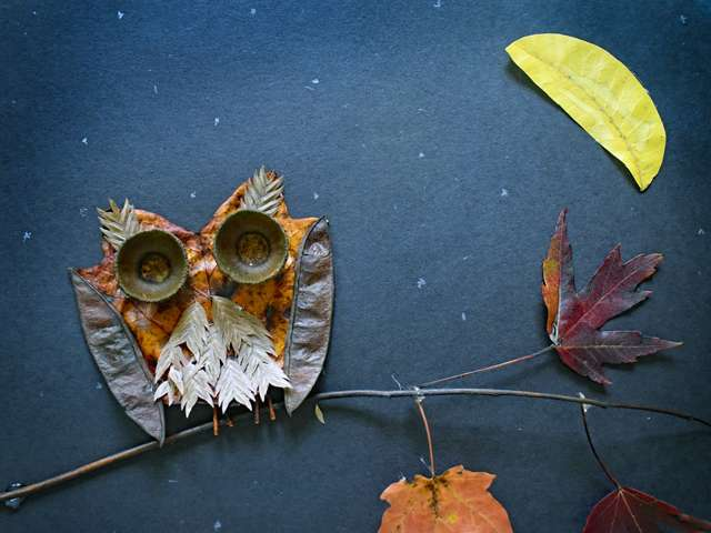 Leaf critters craft